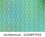 light green vector texture with ...   Shutterstock .eps vector #1234897933