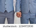newlywed gay couple holding... | Shutterstock . vector #1234972930