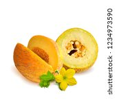 fresh  nutritious and tasty... | Shutterstock .eps vector #1234973590