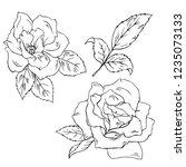 set of silhouette rose flowers... | Shutterstock .eps vector #1235073133