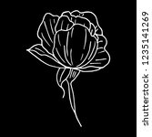 flower peony illustration | Shutterstock . vector #1235141269