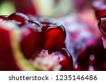 pomegranat on the cloth | Shutterstock . vector #1235146486