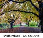 indian summer in park in europe.... | Shutterstock . vector #1235238046
