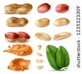 realistic peanut set of... | Shutterstock .eps vector #1235323309