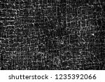 texture black and white | Shutterstock . vector #1235392066