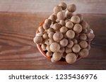 lovely shimeji mushroom   food...   Shutterstock . vector #1235436976