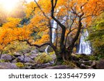amazing waterfall in colorful... | Shutterstock . vector #1235447599