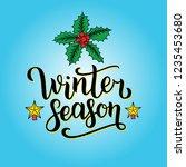 winter season hand written... | Shutterstock . vector #1235453680