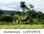 abandoned farmhouse with plants ... | Shutterstock . vector #1235519476