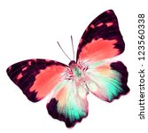 colorful butterfly isolated on... | Shutterstock . vector #123560338