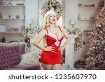 portrait of an erotic woman in... | Shutterstock . vector #1235607970