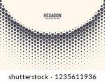 hexagon shapes vector abstract...   Shutterstock .eps vector #1235611936