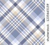 plaid pattern in blue  indigo ... | Shutterstock .eps vector #1235665159