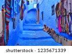 chefchaouen in morrco | Shutterstock . vector #1235671339