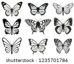 Different Butterflies Set....