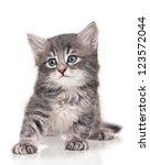 Stock photo sad cute little kitten isolated on white background 123572044