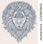 lion head hand drawn in lines... | Shutterstock . vector #1235803810