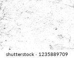 abstract background. monochrome ... | Shutterstock . vector #1235889709