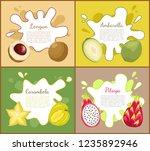 longan and carambola  pitaya... | Shutterstock .eps vector #1235892946