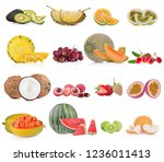 fruits isolated on white... | Shutterstock . vector #1236011413