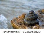 "the concept of ""zen""  rounded... | Shutterstock . vector #1236053020"