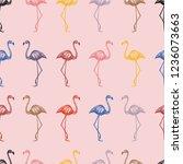 multicolor hand drawn flamingo... | Shutterstock .eps vector #1236073663