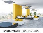 corner of office lounge with... | Shutterstock . vector #1236173323