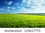 field of spring grass and forest | Shutterstock . vector #123617773