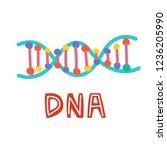genetic engineering. genome... | Shutterstock .eps vector #1236205990