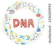 genetic engineering. genome... | Shutterstock .eps vector #1236205993