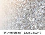 closeup beautiful small white...   Shutterstock . vector #1236256249