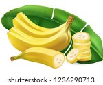 banana with leaf and slice of... | Shutterstock .eps vector #1236290713