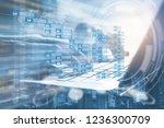 cryptocurrency  blockchain... | Shutterstock . vector #1236300709