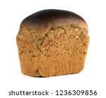 fresh baked bread on white... | Shutterstock . vector #1236309856