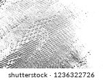 abstract background. monochrome ... | Shutterstock . vector #1236322726