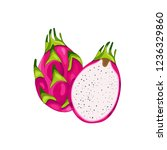 red dragon fruit. half of the... | Shutterstock .eps vector #1236329860