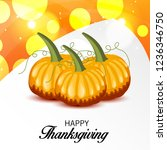 vector illustration of a... | Shutterstock .eps vector #1236346750