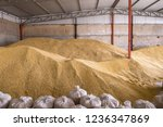 pile of heaps of wheat grains... | Shutterstock . vector #1236347869