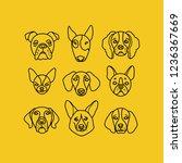 top dog breeds faces. pet...   Shutterstock .eps vector #1236367669