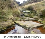 stepping stones in a natural... | Shutterstock . vector #1236496999