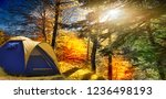tent in the autumn forest on... | Shutterstock . vector #1236498193