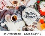 warm  winter clothes. seasonal... | Shutterstock . vector #1236533443