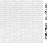 illustration. seamless pattern... | Shutterstock . vector #1236557530