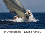 sailing boat race | Shutterstock . vector #1236573490