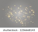dust white. white sparks and... | Shutterstock .eps vector #1236668143