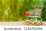 Empty Shopping Cart And A Pile...