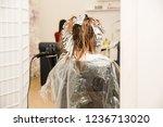 preparation for highlighting ... | Shutterstock . vector #1236713020