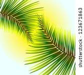 palm leaves against the sunlight   Shutterstock .eps vector #123671863