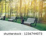 benches in the park.the sun's...   Shutterstock . vector #1236744073