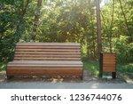 wooden bench in the summer park ...   Shutterstock . vector #1236744076